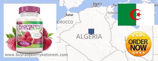 Где купить Raspberry Ketone онлайн Algeria