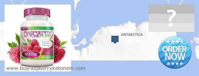 Где купить Raspberry Ketone онлайн Antarctica