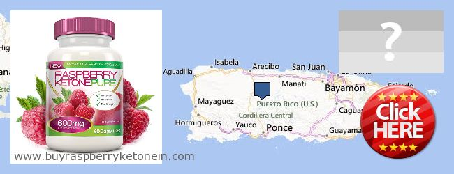 Где купить Raspberry Ketone онлайн Puerto Rico