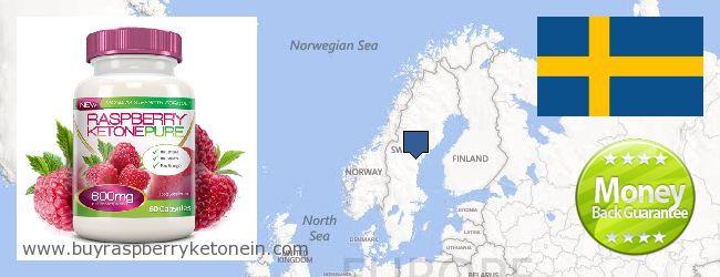 Где купить Raspberry Ketone онлайн Sweden