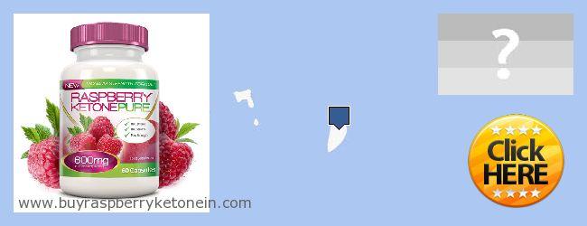 Къде да закупим Raspberry Ketone онлайн Spratly Islands