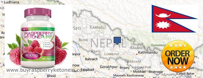 Де купити Raspberry Ketone онлайн Nepal