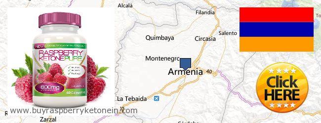 哪里购买 Raspberry Ketone 在线 Armenia