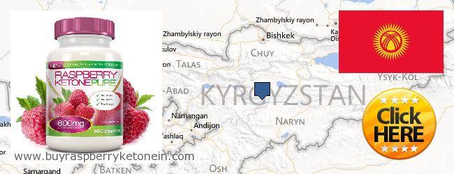 哪里购买 Raspberry Ketone 在线 Kyrgyzstan