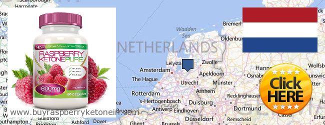 哪里购买 Raspberry Ketone 在线 Netherlands