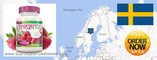 哪里购买 Raspberry Ketone 在线 Sweden