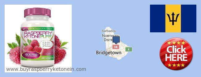Hvor kan jeg købe Raspberry Ketone online Barbados