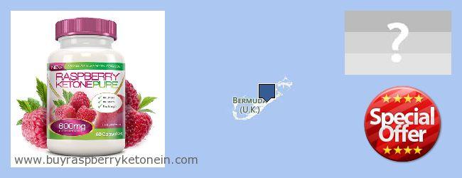 Hvor kan jeg købe Raspberry Ketone online Bermuda