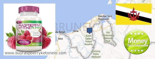 Hvor kan jeg købe Raspberry Ketone online Brunei