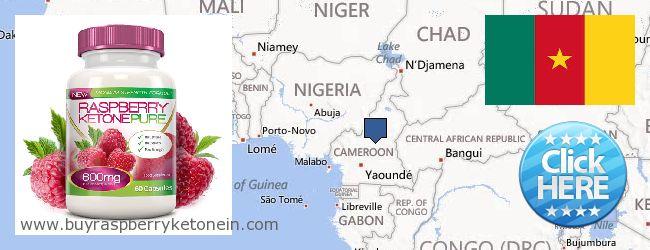 Hvor kan jeg købe Raspberry Ketone online Cameroon
