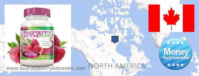 Hvor kan jeg købe Raspberry Ketone online Canada