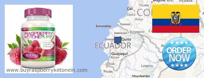 Hvor kan jeg købe Raspberry Ketone online Ecuador