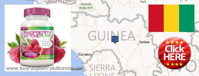 Hvor kan jeg købe Raspberry Ketone online Guinea