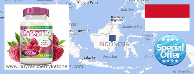 Hvor kan jeg købe Raspberry Ketone online Indonesia