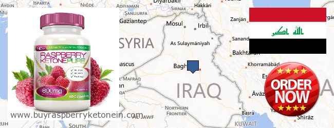 Hvor kan jeg købe Raspberry Ketone online Iraq