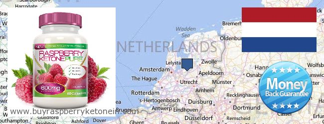 Hvor kan jeg købe Raspberry Ketone online Netherlands