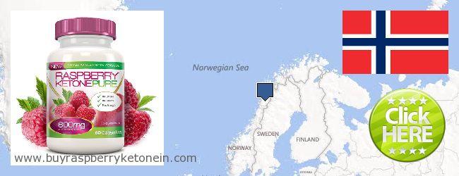 Hvor kan jeg købe Raspberry Ketone online Norway