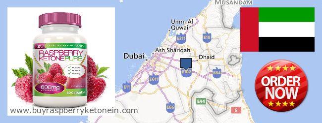 Where to Buy Raspberry Ketone online Ash-Shāriqah [Sharjah], United Arab Emirates