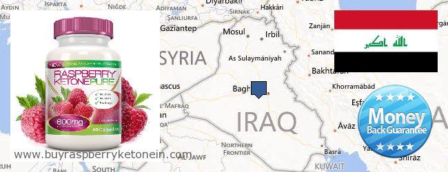 Where to Buy Raspberry Ketone online Iraq
