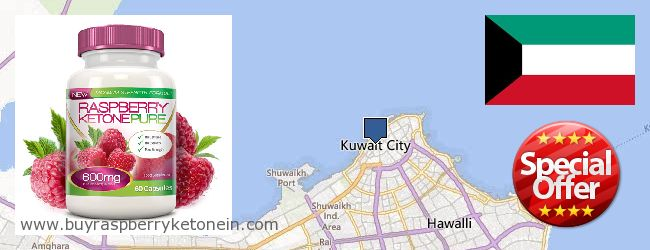 Top 10 Punto Medio Noticias | Raspberry Ketones Price In Kuwait