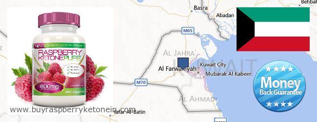 Where to Buy Raspberry Ketone online Kuwait