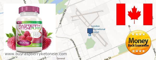 Where to Buy Raspberry Ketone online London ONT, Canada
