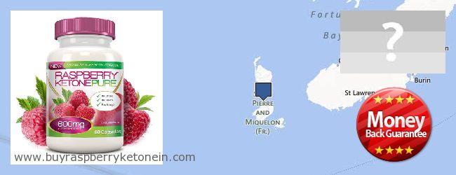 Where to Buy Raspberry Ketone online Saint Pierre And Miquelon