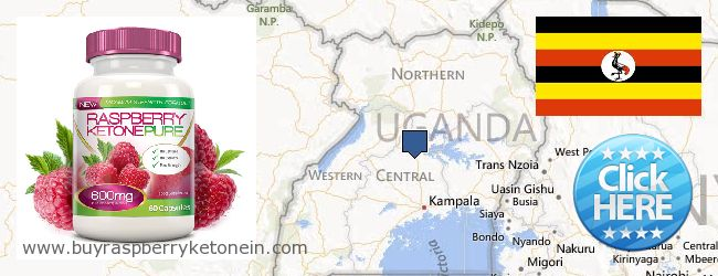 Where to Buy Raspberry Ketone online Uganda