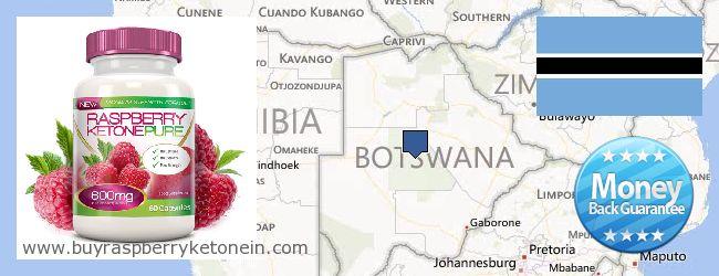 Onde Comprar Raspberry Ketone on-line Botswana