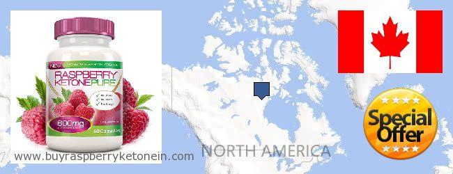 Onde Comprar Raspberry Ketone on-line Canada