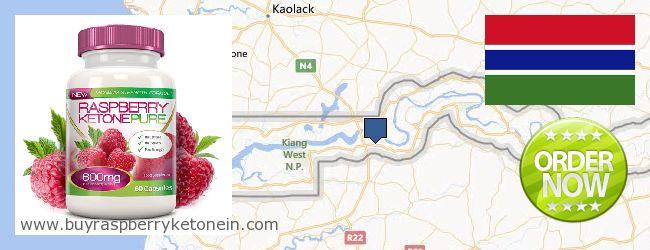 Onde Comprar Raspberry Ketone on-line Gambia
