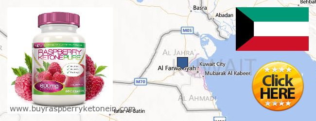 Onde Comprar Raspberry Ketone on-line Kuwait