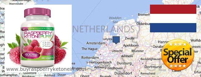 Onde Comprar Raspberry Ketone on-line Netherlands