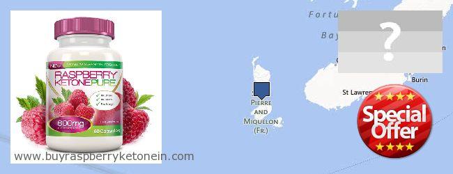 Onde Comprar Raspberry Ketone on-line Saint Pierre And Miquelon