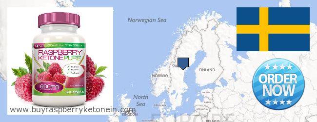 Onde Comprar Raspberry Ketone on-line Sweden