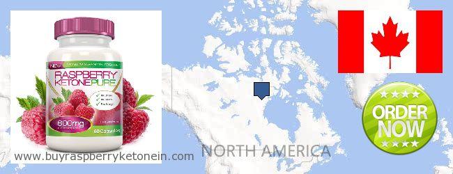 Unde să cumpărați Raspberry Ketone on-line Canada