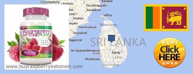 Unde să cumpărați Raspberry Ketone on-line Sri Lanka