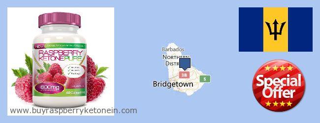 Wo kaufen Raspberry Ketone online Barbados