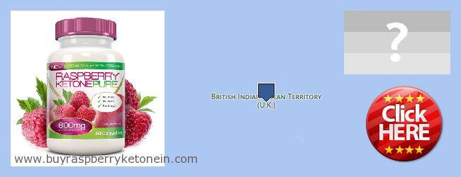 Wo kaufen Raspberry Ketone online British Indian Ocean Territory