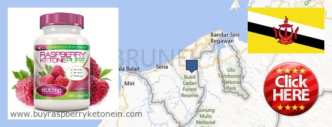Wo kaufen Raspberry Ketone online Brunei