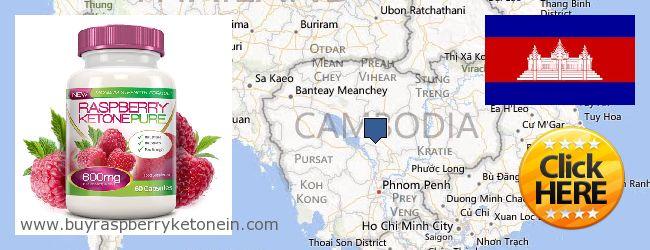 Wo kaufen Raspberry Ketone online Cambodia