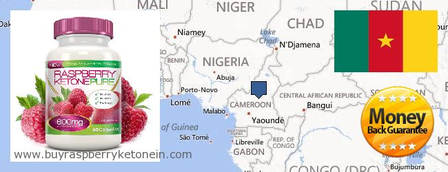 Wo kaufen Raspberry Ketone online Cameroon