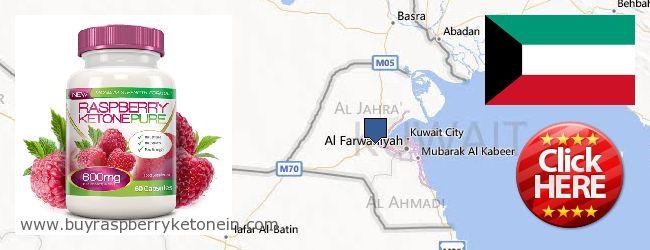 Wo kaufen Raspberry Ketone online Kuwait