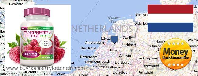 Wo kaufen Raspberry Ketone online Netherlands
