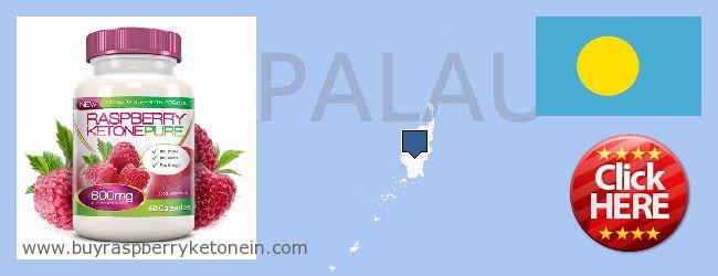 Wo kaufen Raspberry Ketone online Palau