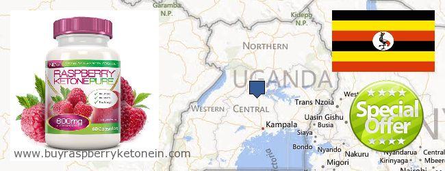 Wo kaufen Raspberry Ketone online Uganda