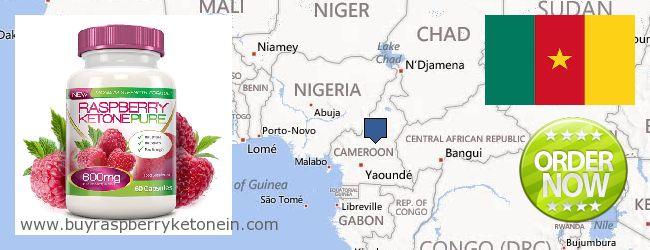 Hol lehet megvásárolni Raspberry Ketone online Cameroon