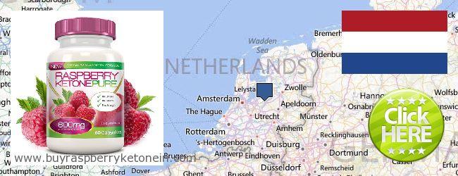 Hol lehet megvásárolni Raspberry Ketone online Netherlands