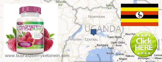 Hol lehet megvásárolni Raspberry Ketone online Uganda