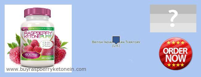 Kde koupit Raspberry Ketone on-line British Indian Ocean Territory